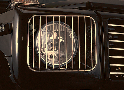 Stainless steel lamp protection grilles